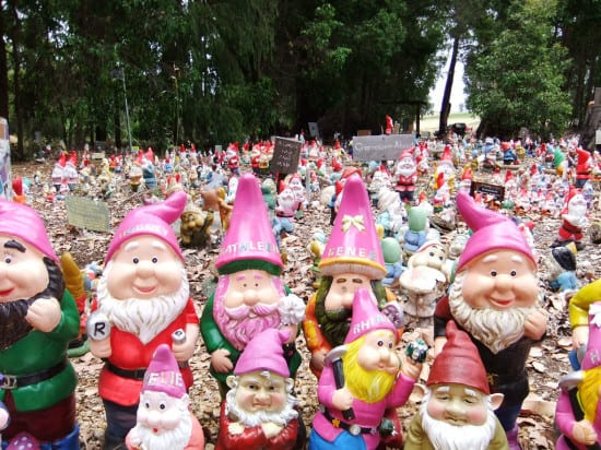 Lots of Gnome at Gnomesville